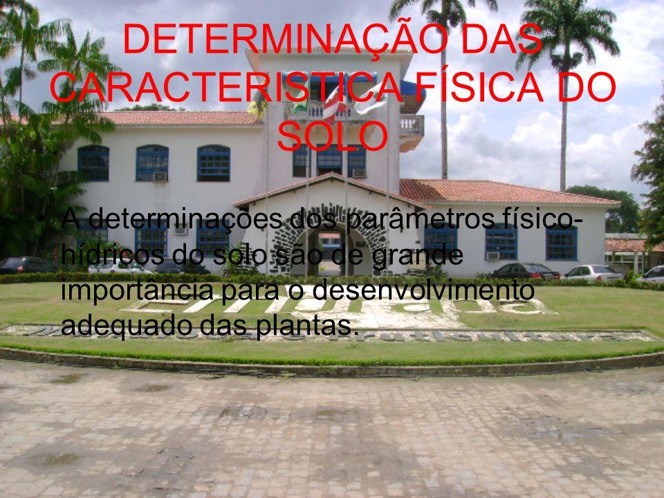 DETERMINAÇÃO DAS CARACTERISTICA FÍSICA DO SOLO A determinações dos parâmetros físico- hídricos do solo são de grande importância para o desenvolviment