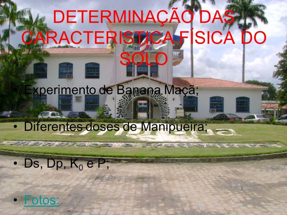 DETERMINAÇÃO DAS CARACTERISTICA FÍSICA DO SOLO Experimento de Banana Maçã; Diferentes doses de Manipueira; Ds, Dp, K 0 e P; Fotos: