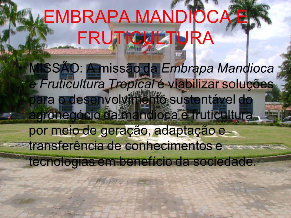 EMBRAPA MANDIOCA E FRUTICULTURA MISSÃO: A missão da Embrapa Mandioca e Fruticultura Tropical é viabilizar soluções para o desenvolvimento sustentável