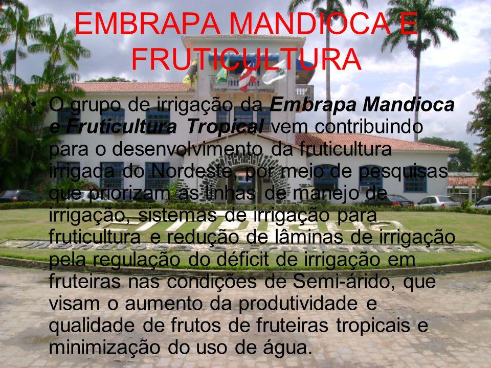 EMBRAPA MANDIOCA E FRUTICULTURA O grupo de irrigação da Embrapa Mandioca e Fruticultura Tropical vem contribuindo para o desenvolvimento da fruticultu