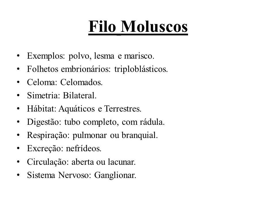 Filo Moluscos Exemplos: polvo, lesma e marisco. Folhetos embrionários: triploblásticos. Celoma: Celomados. Simetria: Bilateral. Hábitat: Aquáticos e T