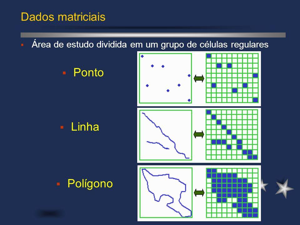Dados matriciais Ponto Linha Polígono Área de estudo dividida em um grupo de células regulares