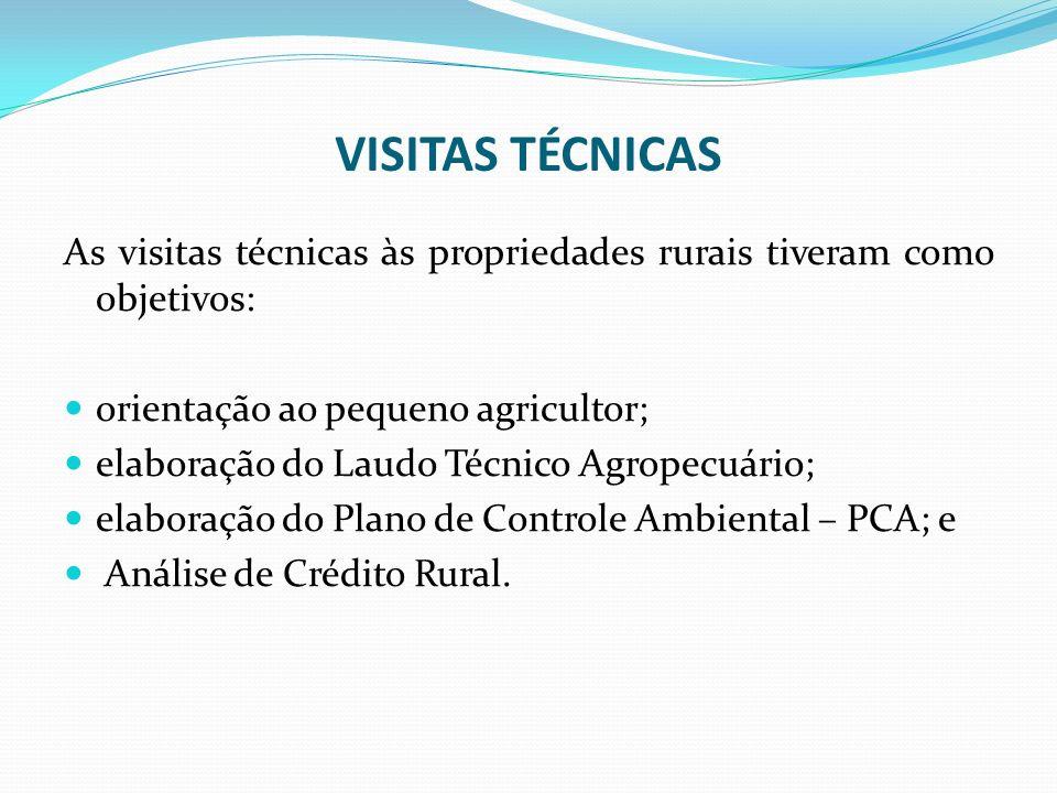 VISITAS TÉCNICAS As visitas técnicas às propriedades rurais tiveram como objetivos: orientação ao pequeno agricultor; elaboração do Laudo Técnico Agro