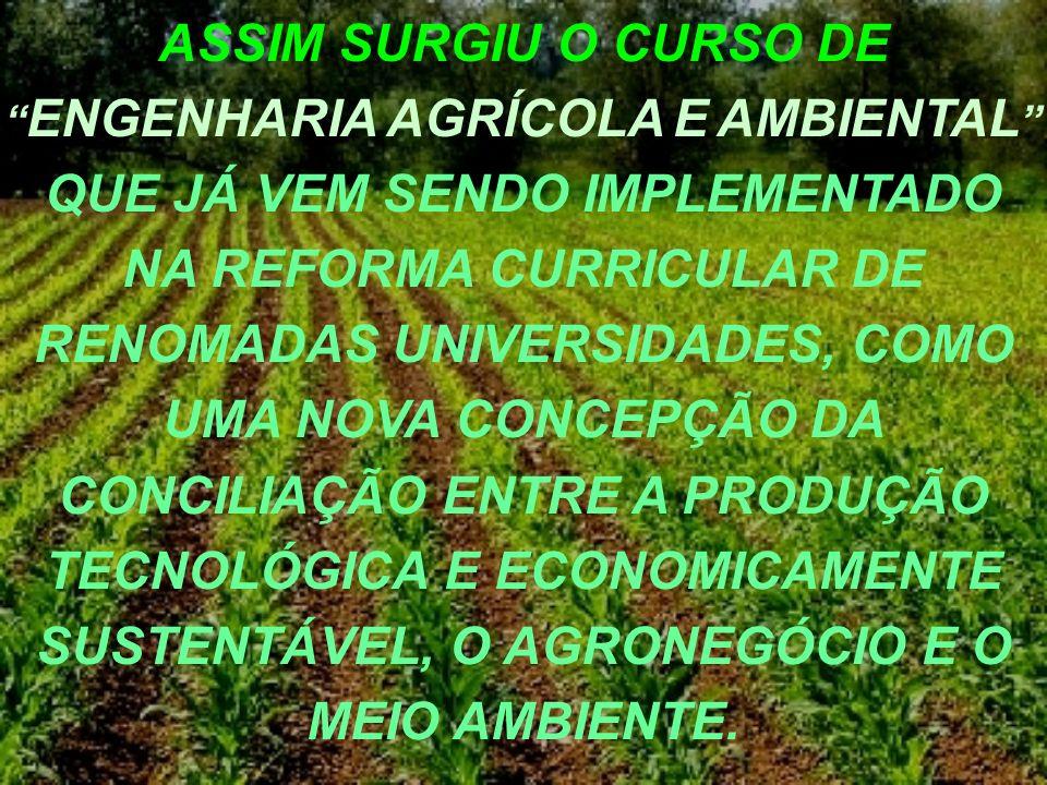 CAMPO PROFISSIONAL DA MODALIDADE AGRÍCOLA (Conforme Memorando encaminhado ao CREA em Maio de 2005 pelo assessor de ensino do CTC, Coordenador do Curso de Engenharia Agrícola e Ambiental da UFV, UFRRJ e UFLA) SETORESSUB-SETORES Construções Rurais e Ambiência Máquinas Agrícolas Tecnologias Pré, Infra e Pós-colheita Energização e Eletrificação Rural Planejamento para Energização Alternativa e Eletrificação Rural.