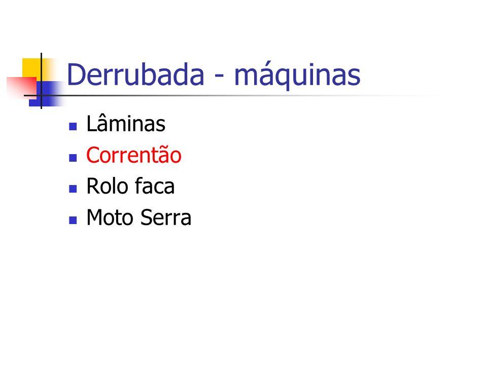 Derrubada - máquinas Lâminas Correntão Rolo faca Moto Serra