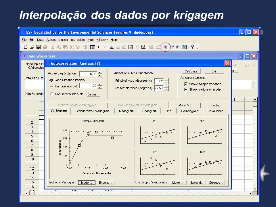 Interpolação dos dados por krigagem