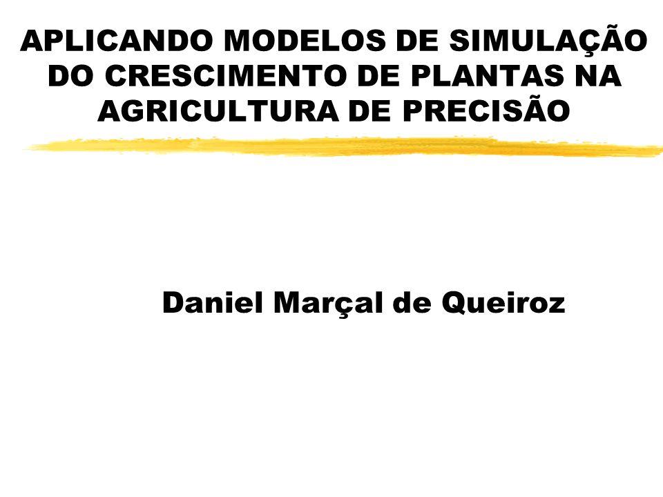 APLICANDO MODELOS DE SIMULAÇÃO DO CRESCIMENTO DE PLANTAS NA AGRICULTURA DE PRECISÃO Daniel Marçal de Queiroz