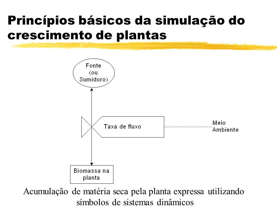 Princípios básicos da simulação do crescimento de plantas Acumulação de matéria seca pela planta expressa utilizando símbolos de sistemas dinâmicos