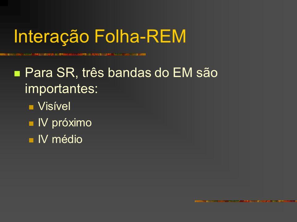 Interação Folha-REM Para SR, três bandas do EM são importantes: Visível IV próximo IV médio