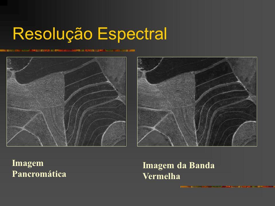 Resolução Espectral Imagem Pancromática Imagem da Banda Vermelha