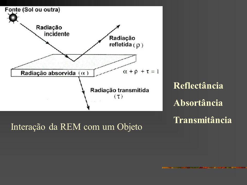 Interação Folha-REM A REM que atinge a folha é refletida, transmitida ou absorvida, e isto depende de: Comprimento de onda Ângulo de incidência Textura, propriedade ópticas e bioquímicas das folhas
