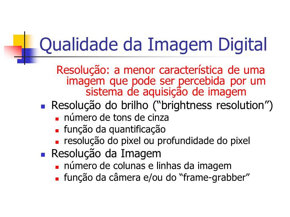 Qualidade da Imagem Digital Resolução: a menor característica de uma imagem que pode ser percebida por um sistema de aquisição de imagem Resolução do