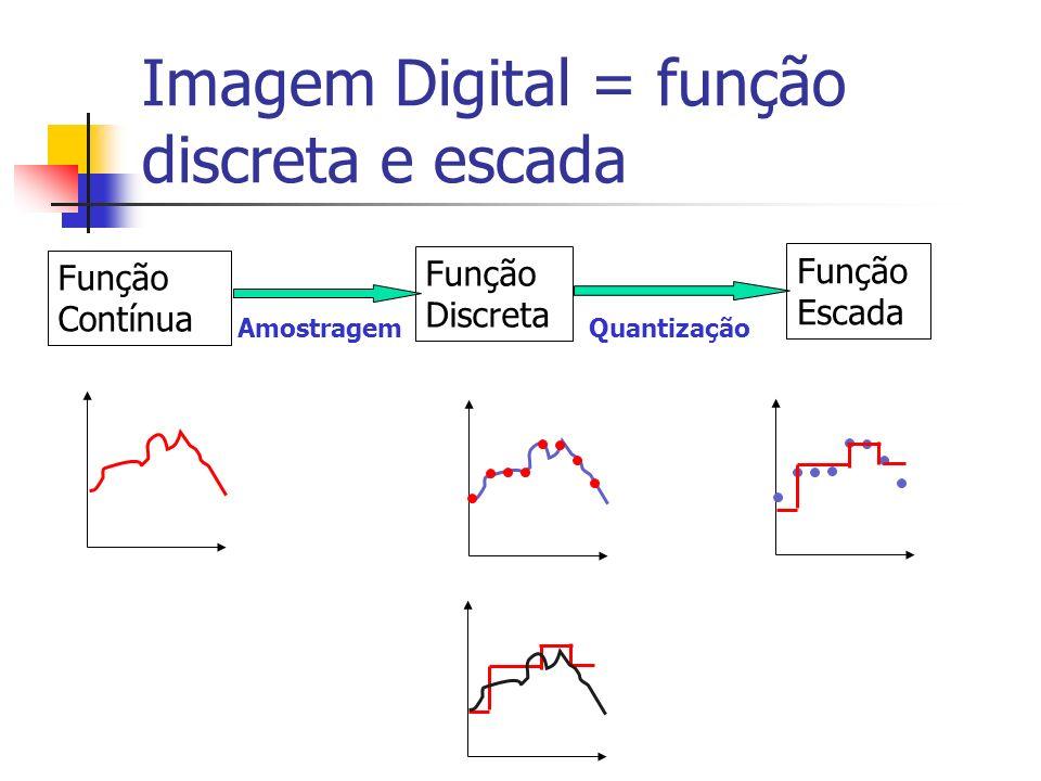 Qualidade da Imagem Digital O grau de detalhe que se gostaria de observar na imagem digital deveria ditar a taxa de amostragem (Teorema da amostragem: a taxa de amostragem deve ser pelo menos duas vezes maior que a maior freqüência espacial) Na prática, os digitalizadores apresentam taxas fixas