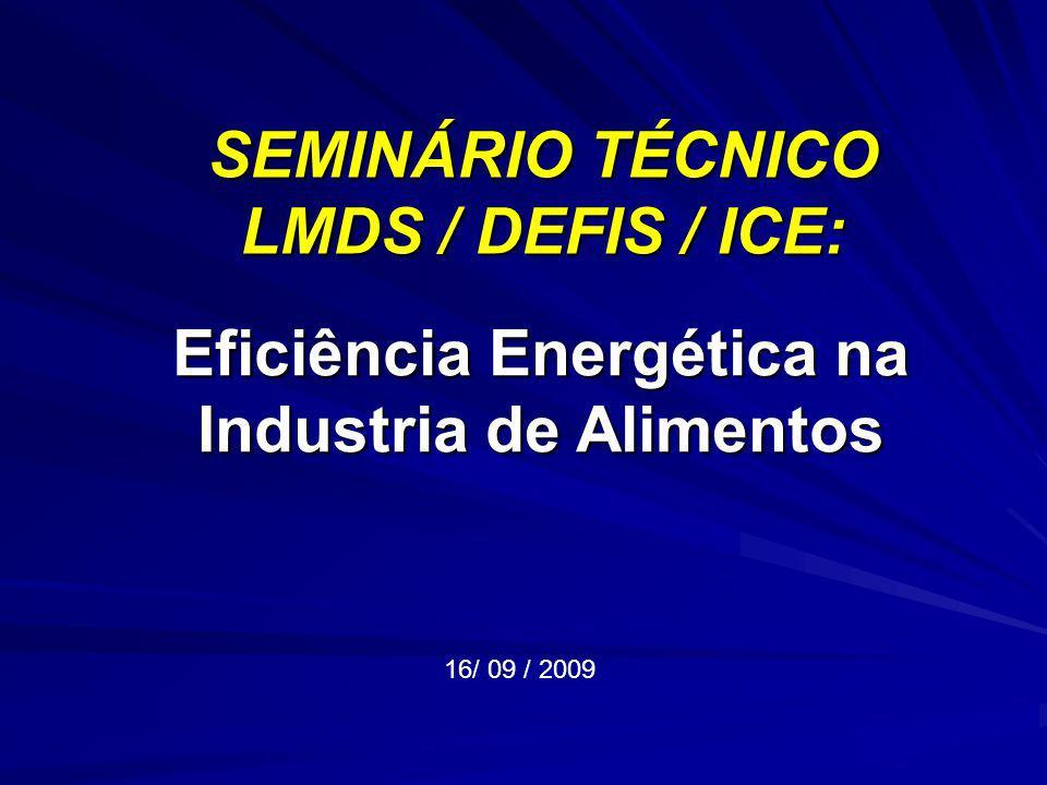 SEMINÁRIO TÉCNICO LMDS / DEFIS / ICE: 16/ 09 / 2009 Eficiência Energética na Industria de Alimentos