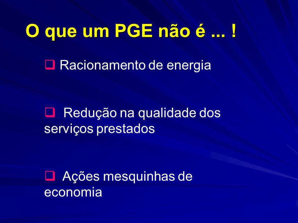 O que um PGE não é... ! Racionamento de energia Redução na qualidade dos serviços prestados Ações mesquinhas de economia