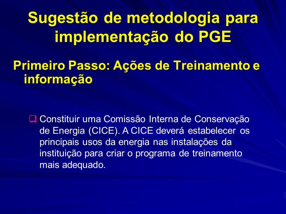 Sugestão de metodologia para implementação do PGE Primeiro Passo: Ações de Treinamento e informação Constituir uma Comissão Interna de Conservação de