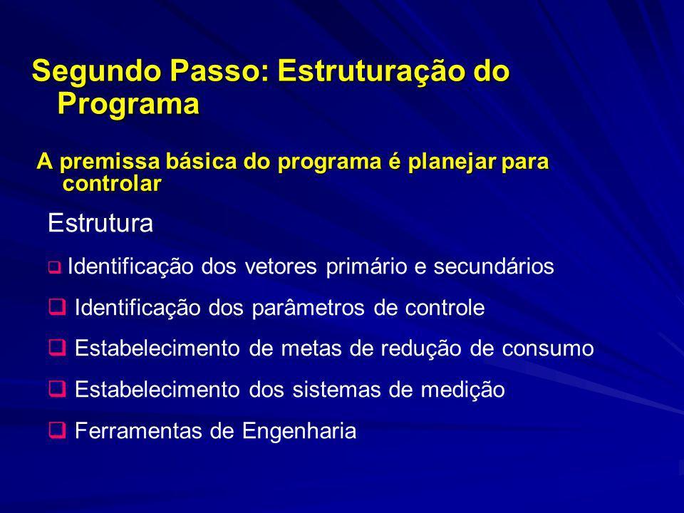 A premissa básica do programa é planejar para controlar Segundo Passo: Estruturação do Programa Estrutura Identificação dos vetores primário e secundá