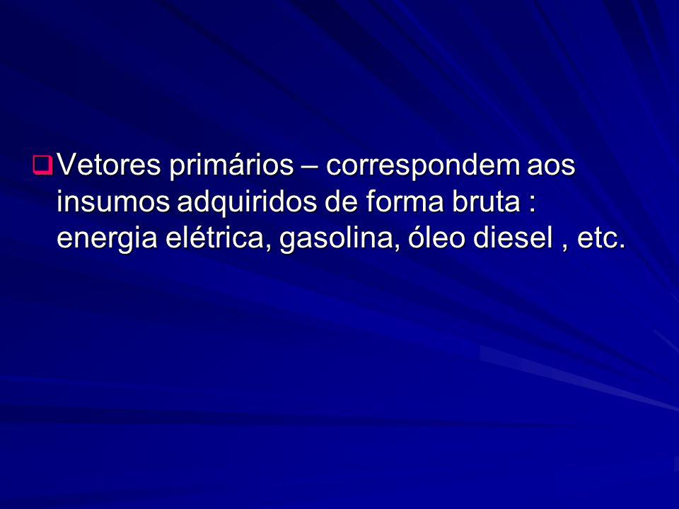 Vetores primários – correspondem aos insumos adquiridos de forma bruta : energia elétrica, gasolina, óleo diesel, etc. Vetores primários – corresponde
