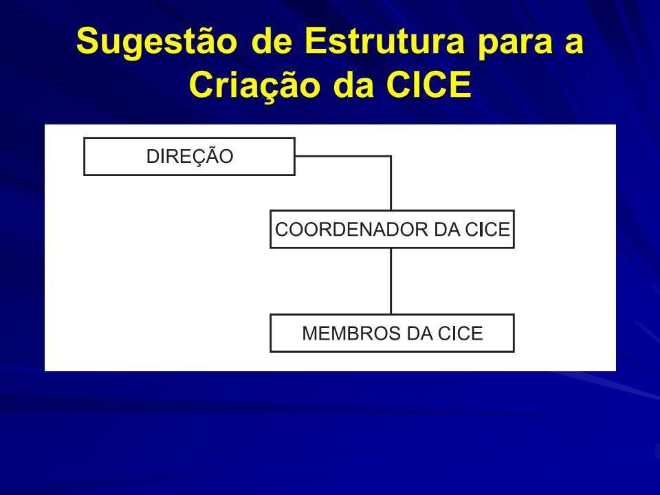 Sugestão de Estrutura para a Criação da CICE
