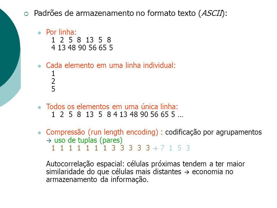 Padrões de armazenamento no formato texto (ASCII): Por linha: 1 2 5 8 13 5 8 4 13 48 90 56 65 5 Cada elemento em uma linha individual: 1 2 5 Todos os