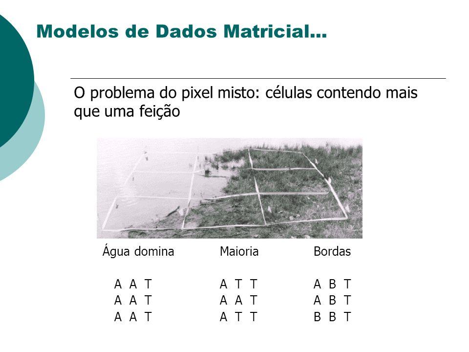 Água dominaMaioriaBordas A A TA T TA B T A A TA A TA B T A A TA T TB B T O problema do pixel misto: células contendo mais que uma feição Modelos de Da