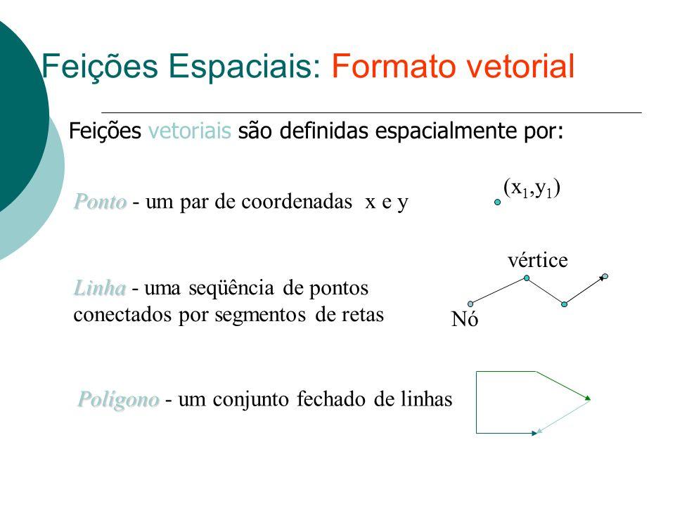Feições Espaciais: Formato vetorial Ponto Ponto - um par de coordenadas x e y (x 1,y 1 ) Linha Linha - uma seqüência de pontos conectados por segmento