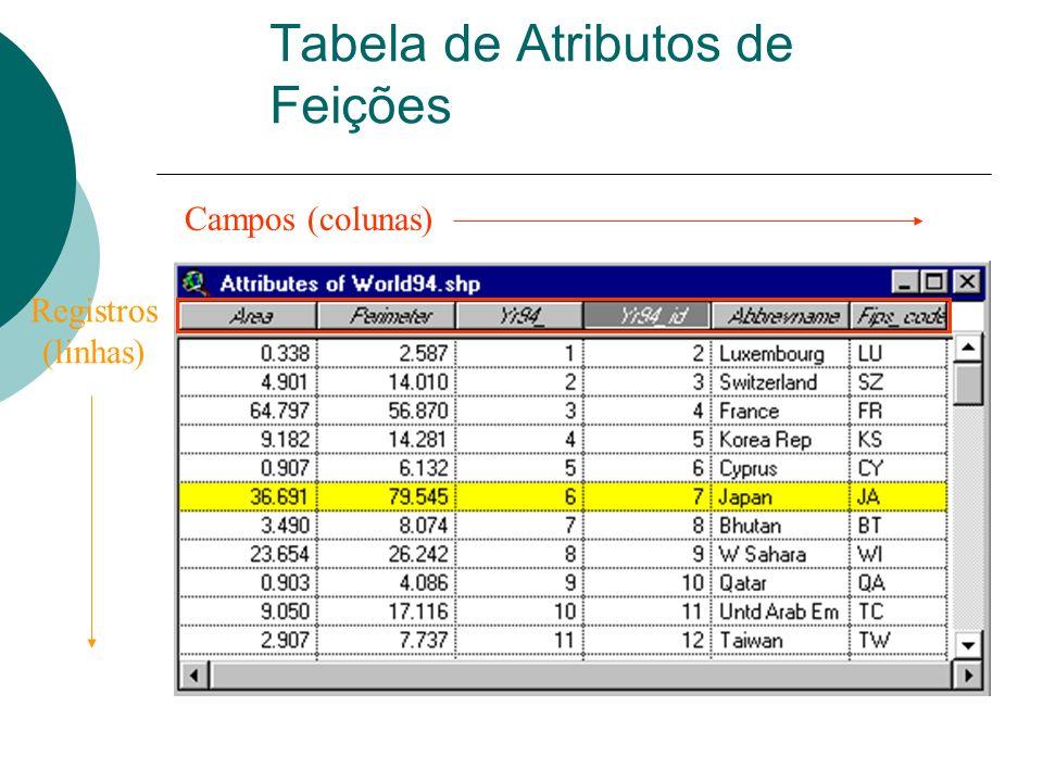 Tabela de Atributos de Feições Campos (colunas) Registros (linhas)