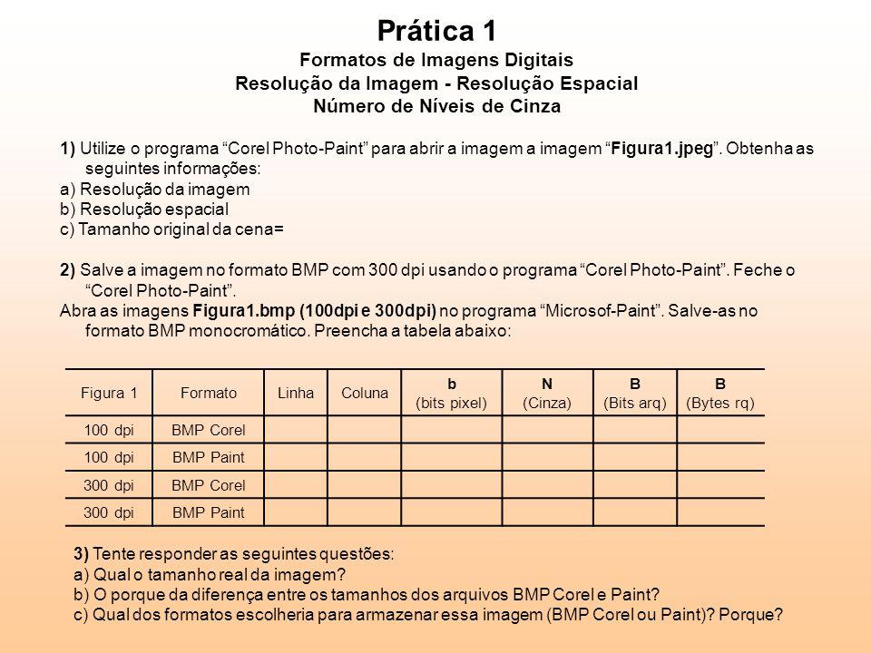 Prática 1 Formatos de Imagens Digitais Resolução da Imagem - Resolução Espacial Número de Níveis de Cinza 1) Utilize o programa Corel Photo-Paint para