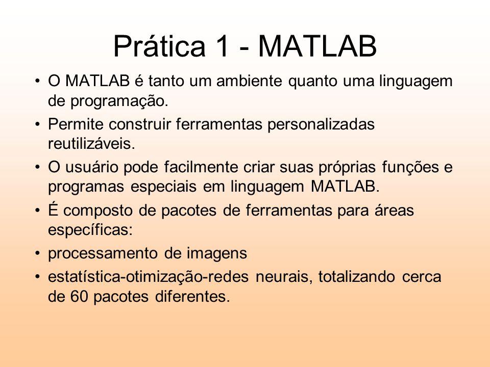 Prática 1 - MATLAB O MATLAB é tanto um ambiente quanto uma linguagem de programação. Permite construir ferramentas personalizadas reutilizáveis. O usu