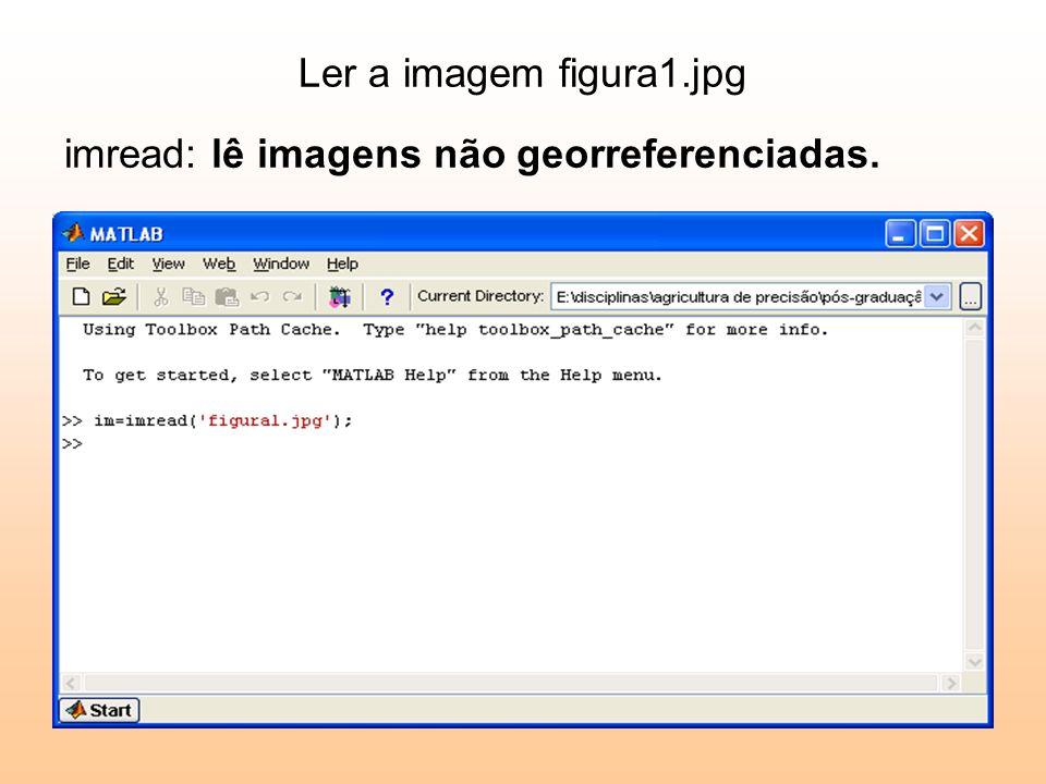 Ler a imagem figura1.jpg imread: lê imagens não georreferenciadas.