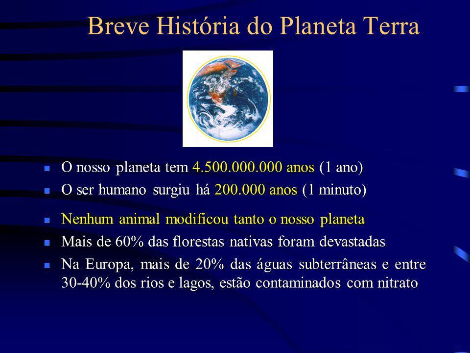 Breve História do Planeta Terra O nosso planeta tem 4.500.000.000 anos (1 ano) O nosso planeta tem 4.500.000.000 anos (1 ano) O ser humano surgiu há 2