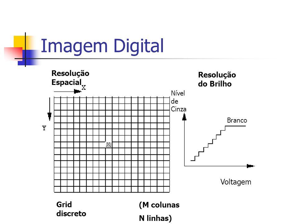Resolução Espacial Resolução do Brilho Grid discreto (M colunas N linhas) Voltagem Nível de Cinza Branco