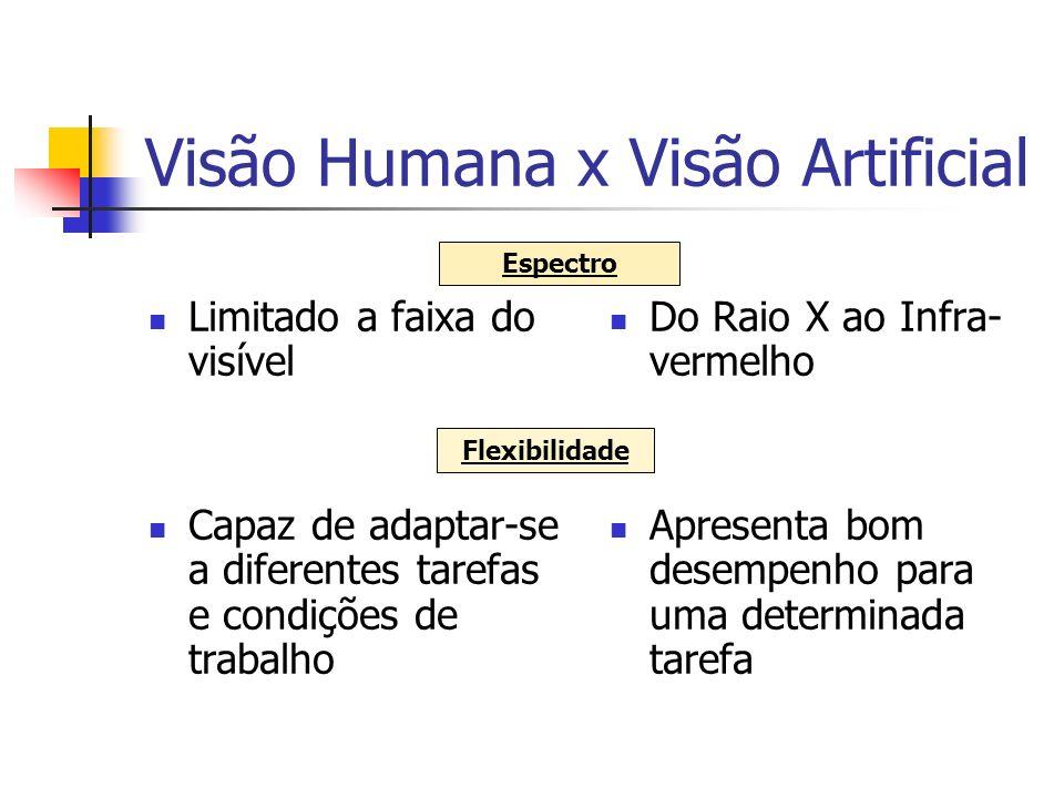 Visão Humana x Visão Artificial Limitado a faixa do visível Capaz de adaptar-se a diferentes tarefas e condições de trabalho Do Raio X ao Infra- verme