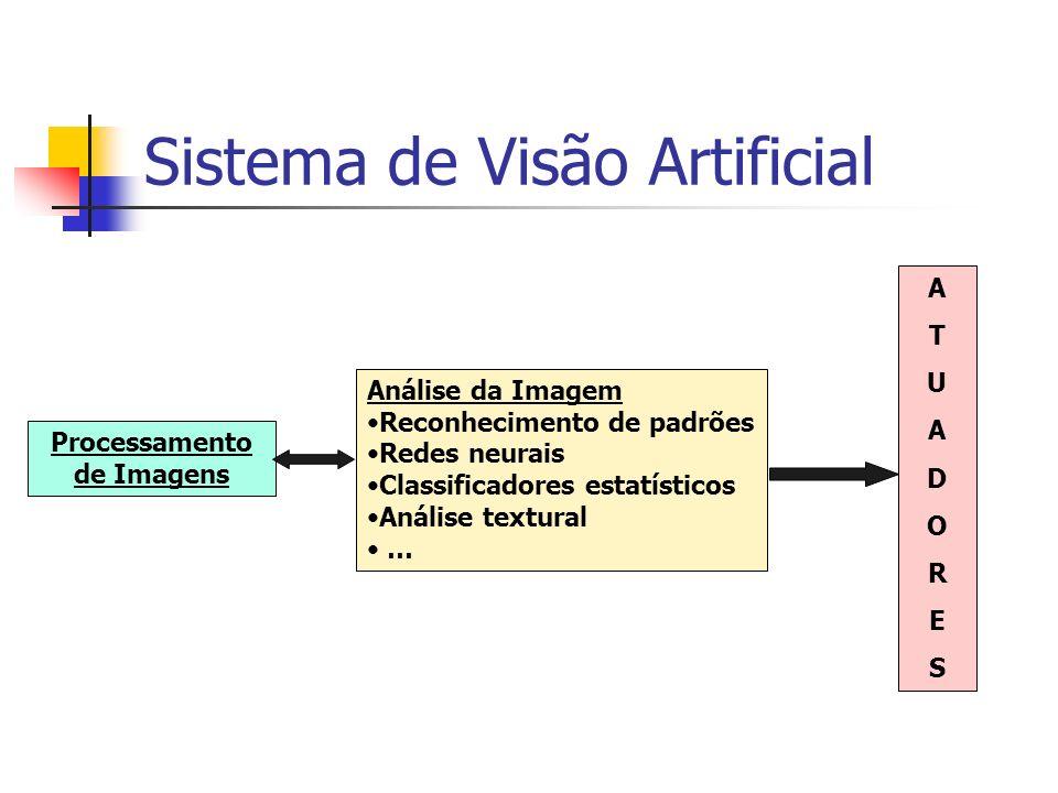Sistema de Visão Artificial Processamento de Imagens Análise da Imagem Reconhecimento de padrões Redes neurais Classificadores estatísticos Análise te