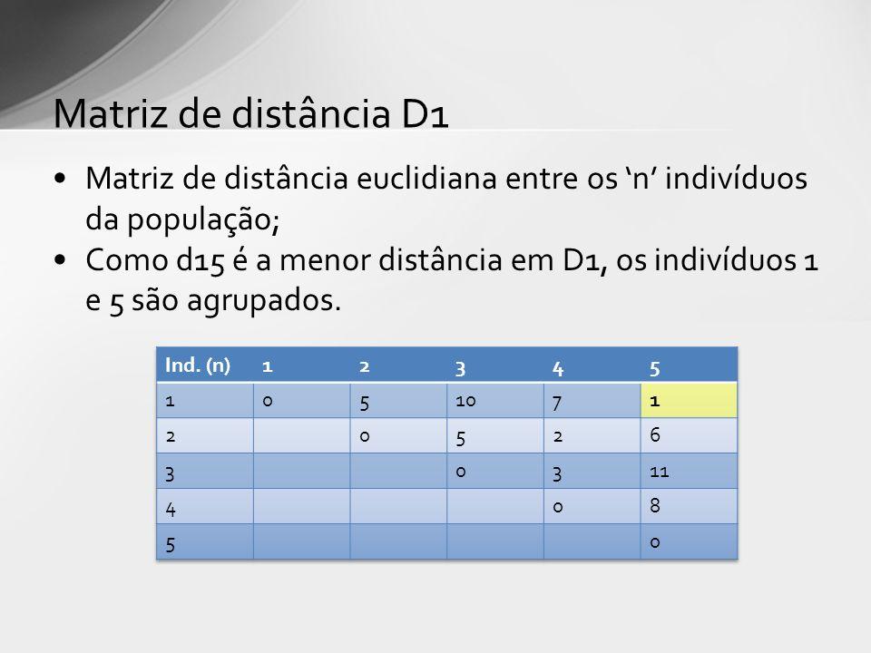 Matriz de distância euclidiana entre os n indivíduos da população; Como d15 é a menor distância em D1, os indivíduos 1 e 5 são agrupados. Matriz de di