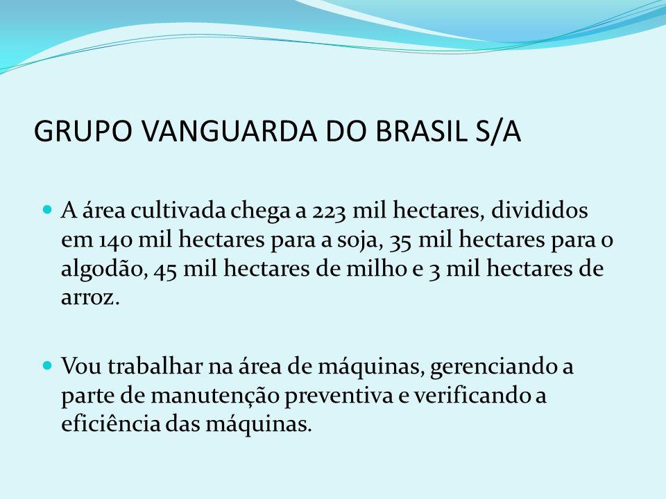 GRUPO VANGUARDA DO BRASIL S/A A área cultivada chega a 223 mil hectares, divididos em 140 mil hectares para a soja, 35 mil hectares para o algodão, 45