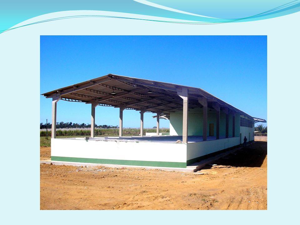 GRUPO VANGUARDA DO BRASIL S/A A área cultivada chega a 223 mil hectares, divididos em 140 mil hectares para a soja, 35 mil hectares para o algodão, 45 mil hectares de milho e 3 mil hectares de arroz.