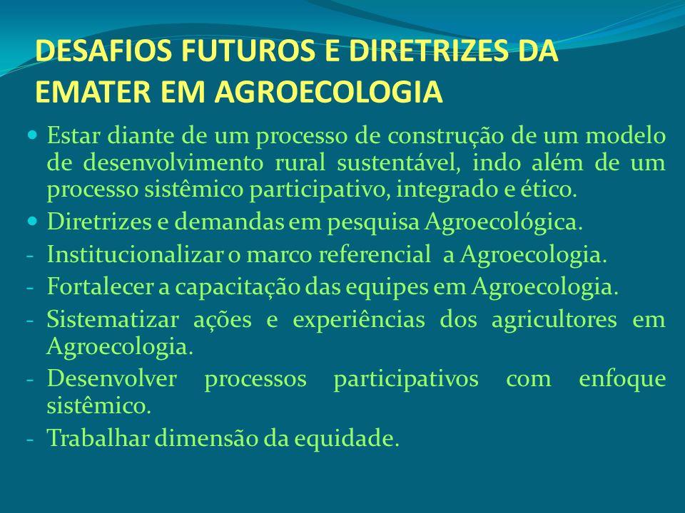 DESAFIOS FUTUROS E DIRETRIZES DA EMATER EM AGROECOLOGIA Estar diante de um processo de construção de um modelo de desenvolvimento rural sustentável, i
