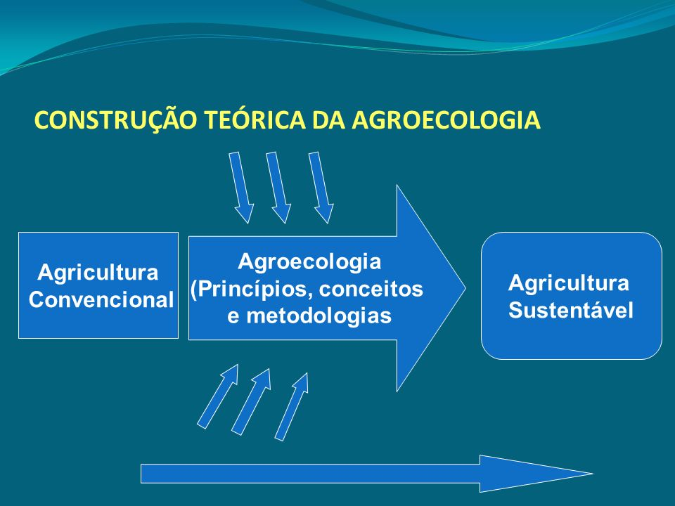 CONSTRUÇÃO TEÓRICA DA AGROECOLOGIA Agricultura Convencional Agroecologia (Princípios, conceitos e metodologias Agricultura Sustentável