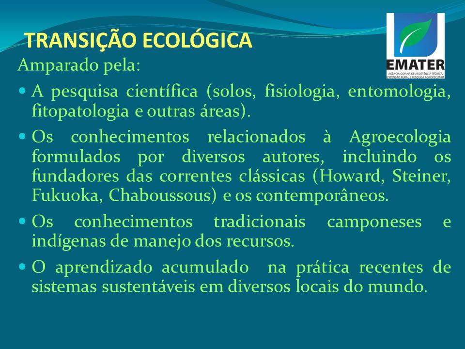 TRANSIÇÃO ECOLÓGICA Amparado pela: A pesquisa científica (solos, fisiologia, entomologia, fitopatologia e outras áreas). Os conhecimentos relacionados
