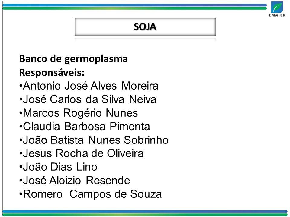 Banco de germoplasma Responsáveis: Antonio José Alves Moreira José Carlos da Silva Neiva Marcos Rogério Nunes Claudia Barbosa Pimenta João Batista Nun