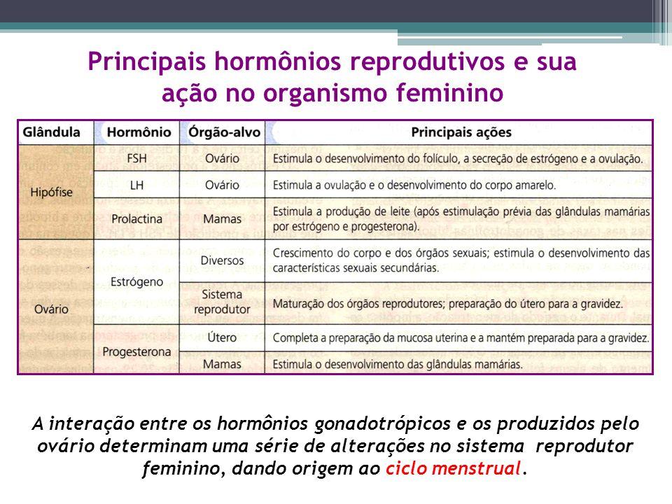 Principais hormônios reprodutivos e sua ação no organismo feminino A interação entre os hormônios gonadotrópicos e os produzidos pelo ovário determina