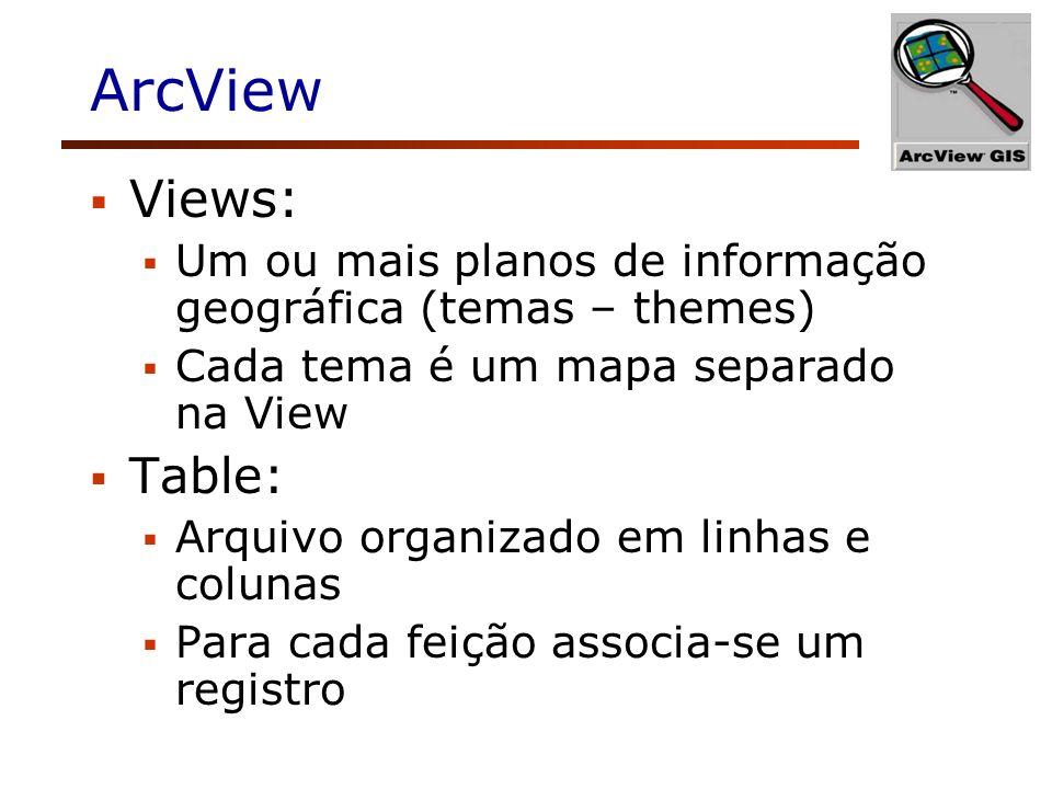 ArcView Views: Um ou mais planos de informação geográfica (temas – themes) Cada tema é um mapa separado na View Table: Arquivo organizado em linhas e