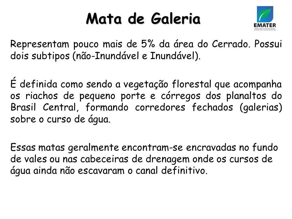 Representam pouco mais de 5% da área do Cerrado.Possui dois subtipos (não-Inundável e Inundável).