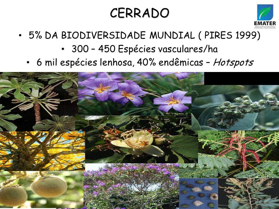 5% DA BIODIVERSIDADE MUNDIAL ( PIRES 1999) 300 – 450 Espécies vasculares/ha 6 mil espécies lenhosa, 40% endêmicas – Hotspots CERRADO