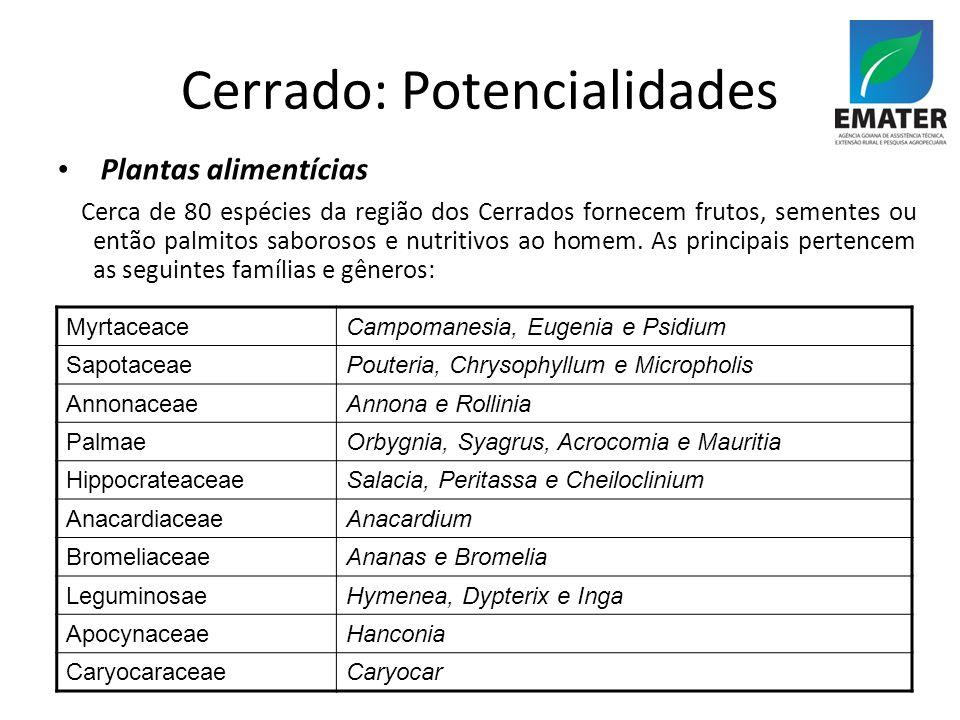 Cerrado: Potencialidades Plantas alimentícias Cerca de 80 espécies da região dos Cerrados fornecem frutos, sementes ou então palmitos saborosos e nutritivos ao homem.