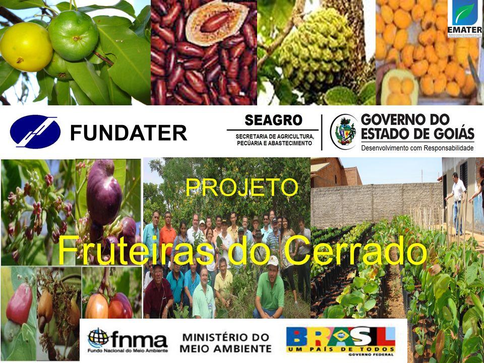 PROJETO Fruteiras do Cerrado PROJETO Fruteiras do Cerrado FUNDATER