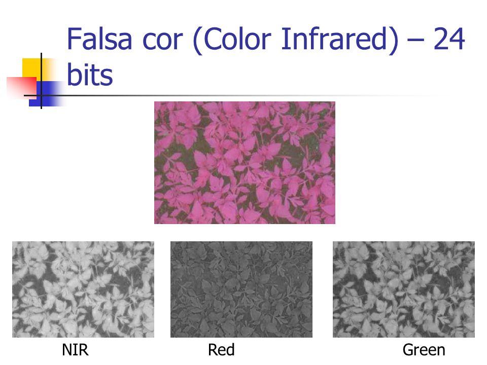 Falsa cor (Color Infrared) – 24 bits NIRRedGreen