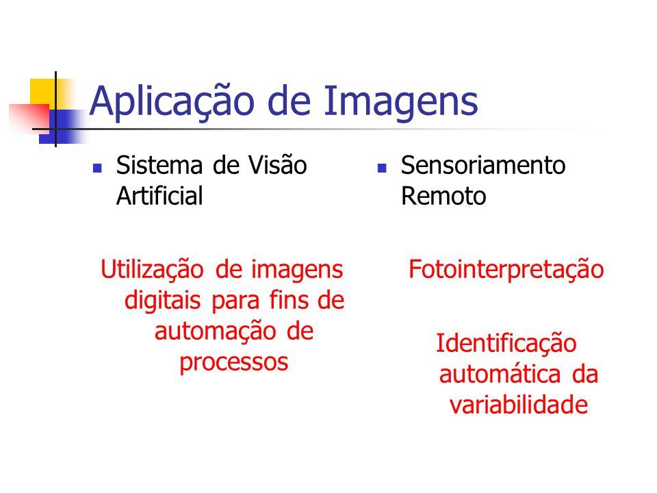 Aplicação de Imagens Sistema de Visão Artificial Utilização de imagens digitais para fins de automação de processos Sensoriamento Remoto Fotointerpret