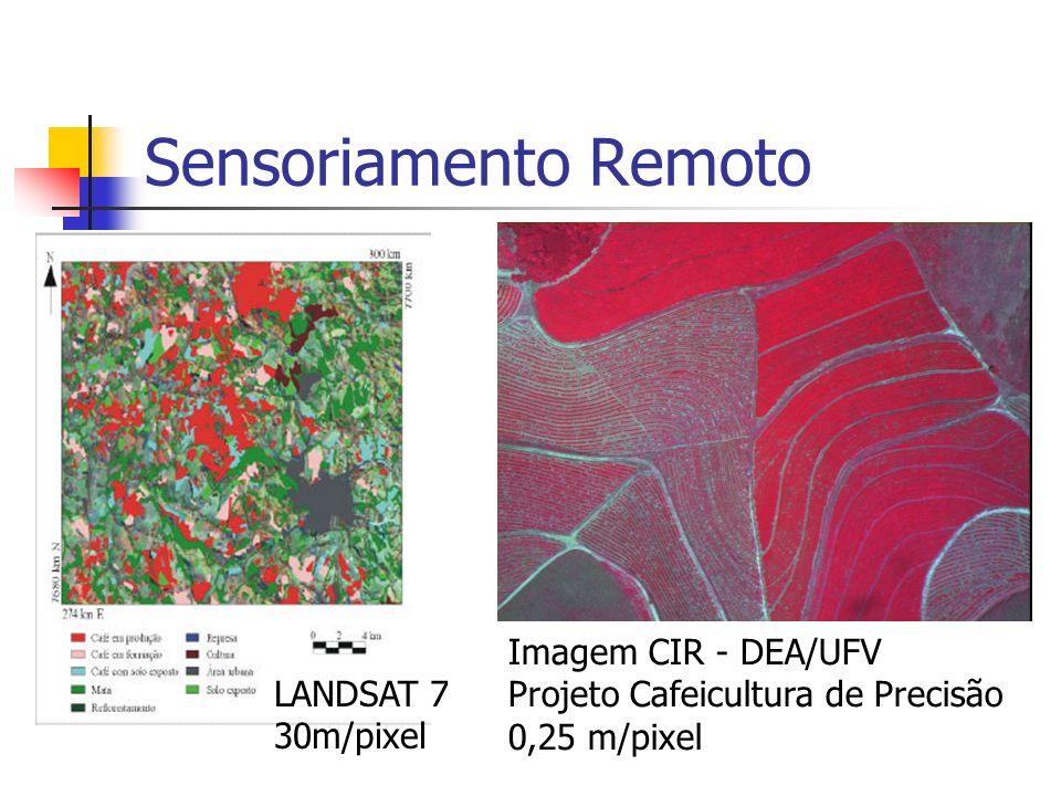 Sensoriamento Remoto LANDSAT 7 30m/pixel Imagem CIR - DEA/UFV Projeto Cafeicultura de Precisão 0,25 m/pixel